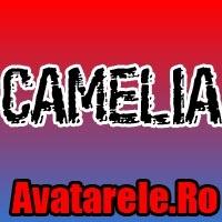 Poze Camelia