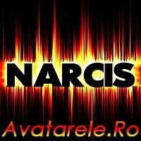 Poze Narcis
